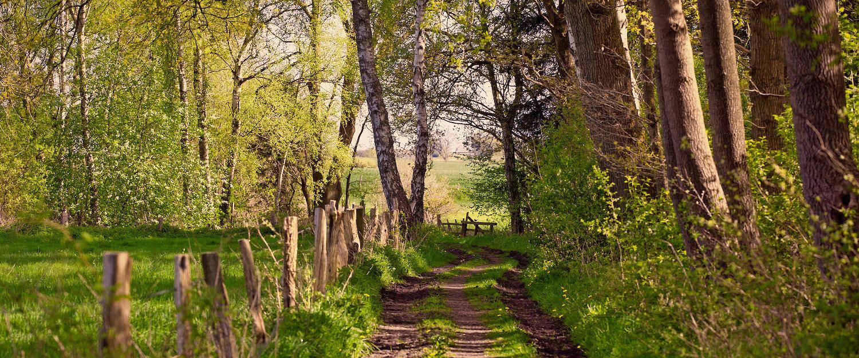 Paradiesische Landschaften für Wanderungen