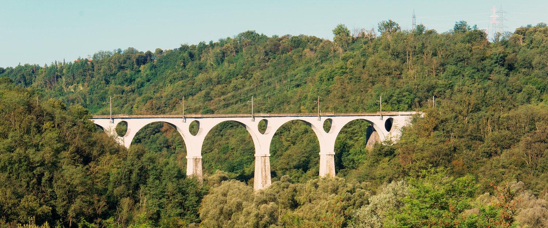 Ponte di ferro di Malnate.