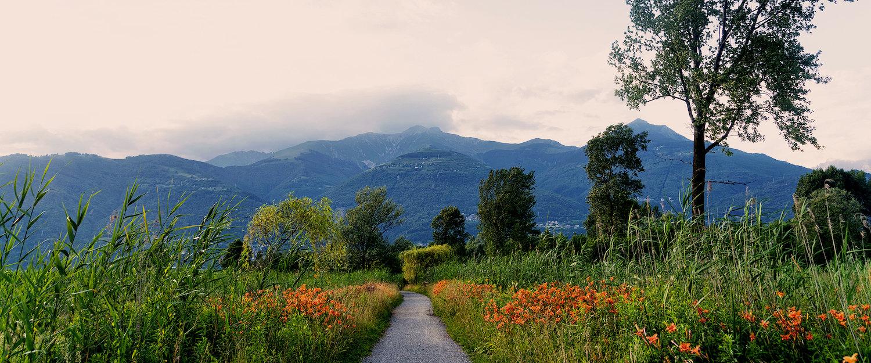 Sentiero in Valtellina, nei pressi di Colico.