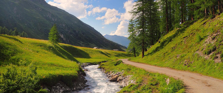 Herrlicher Wanderweg in der schweizerischen Berglandschaft