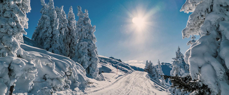 Winterwunderlandschaft in Österreich