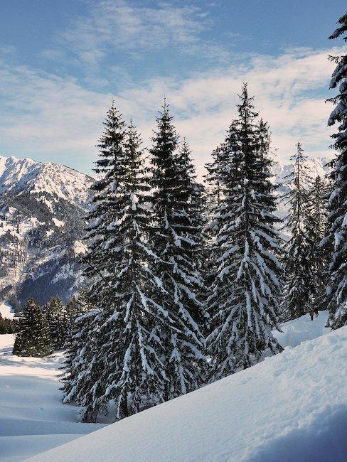 Winterlandschaft in Bad Hindelang