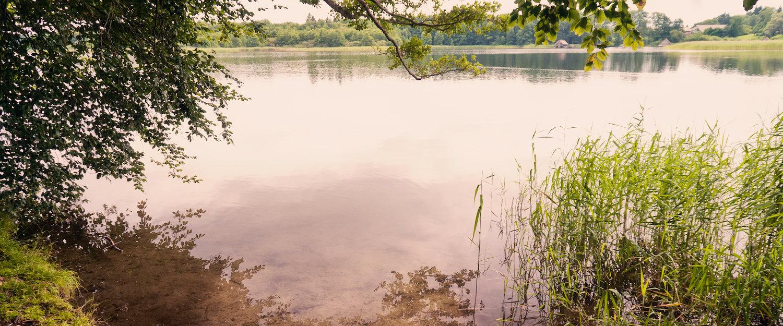 Ferienwohnungen und Ferienhäuser am Schaalsee