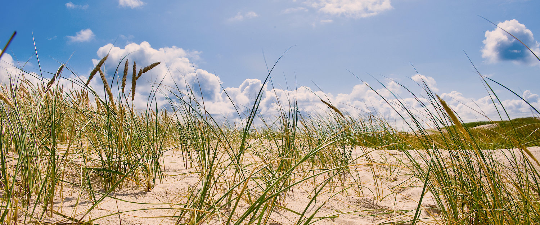 Ferienwohnungen und Ferienhäuser am Vejers Strand