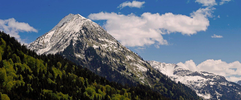 Vacation Rentals in Bregenz Forest