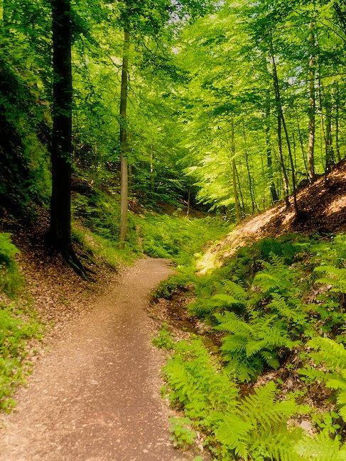 De Drakenkloof in het Thüringer Woud
