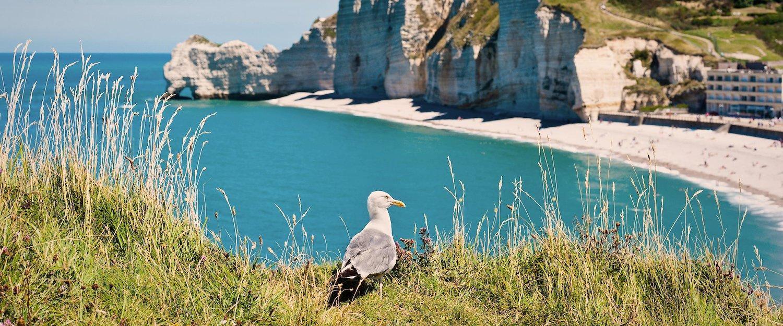 Locations de vacances et maisons de vacances en Normandie