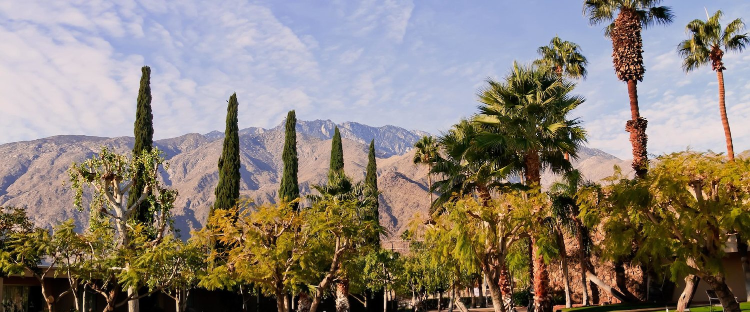 Vacation Rentals in Palm Springs