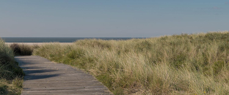 Holzsteg in Dünen an der Nordsee