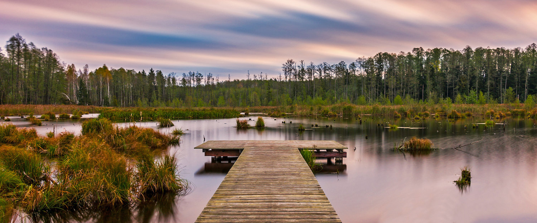 Na terenie Podlasia znajdują się liczne lasy i jeziora