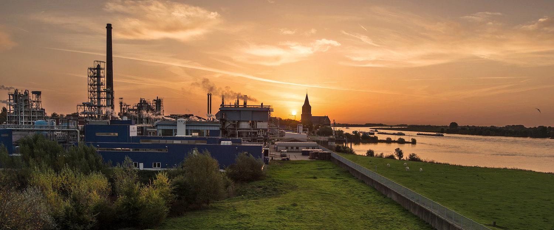Rheinufer im Sonnenuntergang