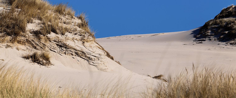 Genießen Sie einen ausgedehnten Spaziergang durch die Sanddünen bei Leba.