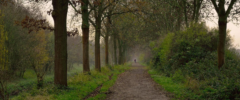 Erholsame Naturlandschaft in Mönchengladbach