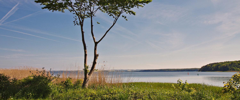Traumhafter Ausblick von Rügen auf die Ostsee