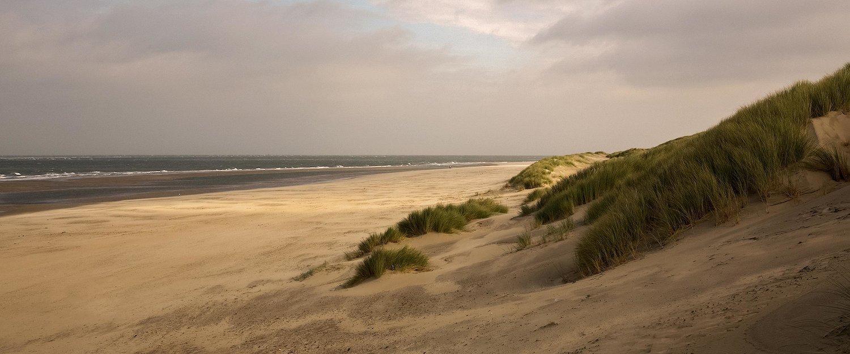 Strand und Dünen in Holland