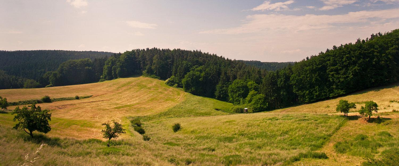 Traumhafte Naturlandschaft um Ilmenau