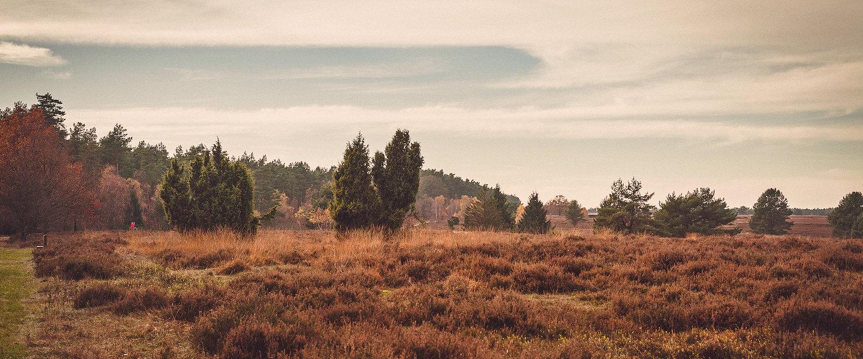 Traumhafte Landschaft um Norderstedt