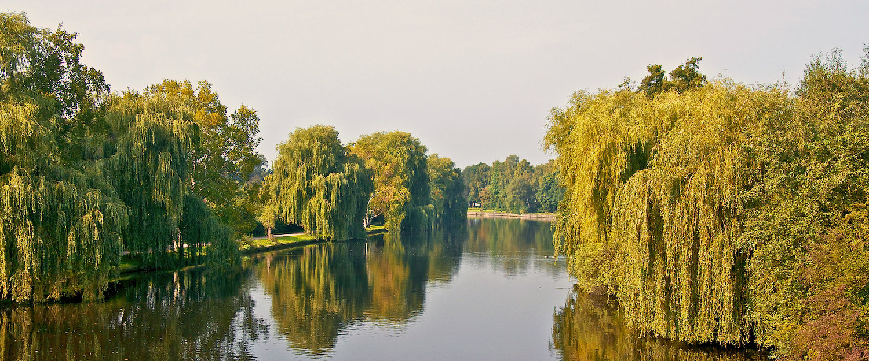 In het stadspark van Norderstedt