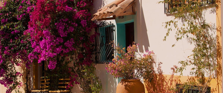 Casas rurales y chalets en Guadalajara