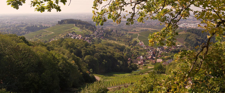 Aussicht von der Burgruine Neuwindeck Bei Bühl