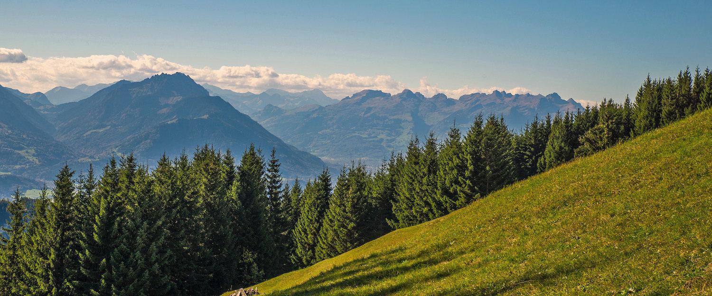 Dromerig uitzicht op de Alpen