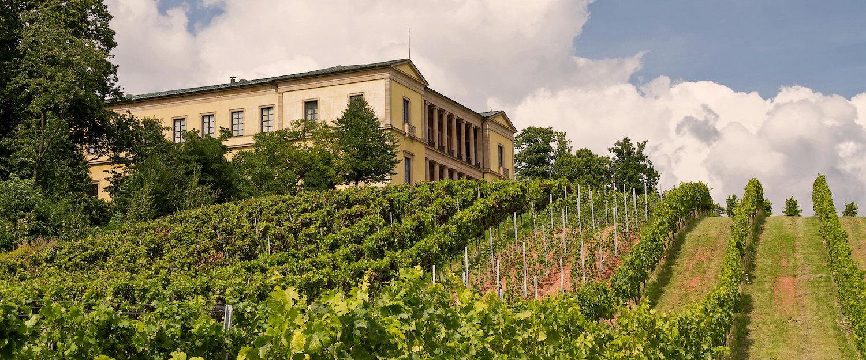 Villa Ludwigshöhe nahe Edenkoben