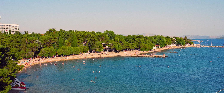 Strand mit Kiefern in Vodice