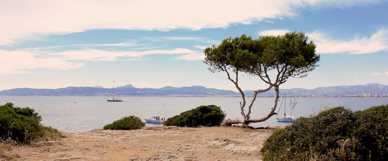 Ferienwohnungen und Ferienhäuser in Playa de Palma