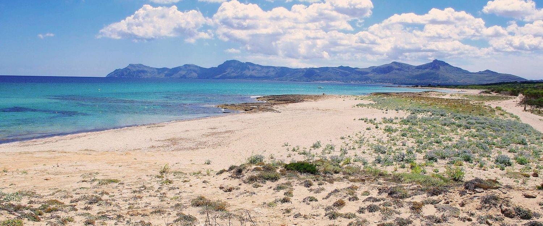 Der wunderschöne, weite Strand von Son Serra de Marina.