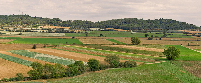 EL paisaje de los alrededores de Torroella de Montgrí