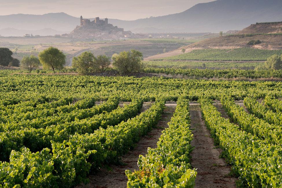 Departamentos y casas vacacionales en renta en La Rioja