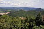 Palatinate Forest