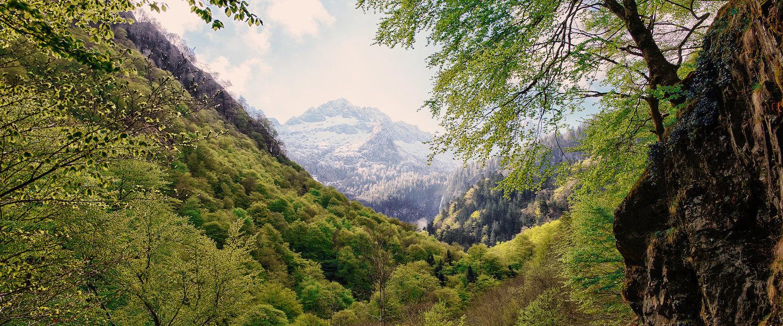 Locations de vacances et maisons de vacances aux Pyrénées