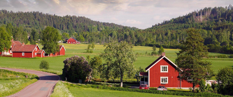 Semesterhus och lägenheter i Ljungby