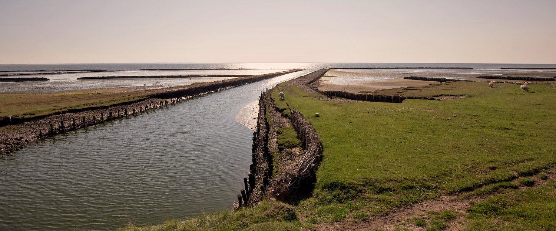 Nationalpark Wattenmeer in Esbjerg