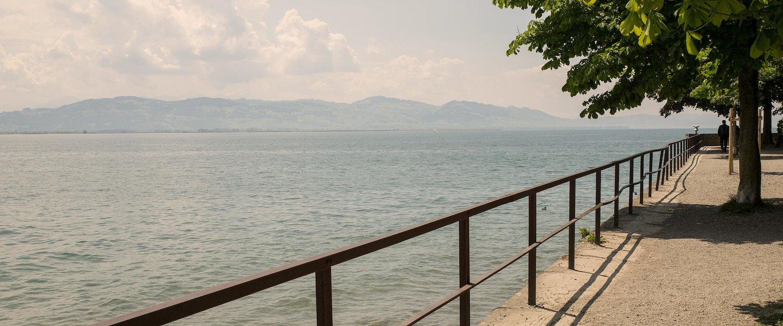 Das Ufer des Bodensees