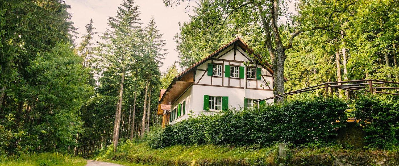 Natuurhuisjes & Lodges in het Zwarte Woud