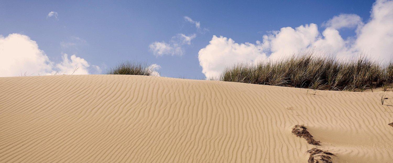 Dünenlandschaft bei Wenningstedt