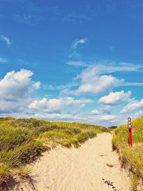 Genießen Sie lange Strandspaziergänge auf Fanø
