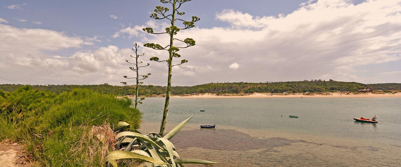 Costa de Vila nova de Milfontes