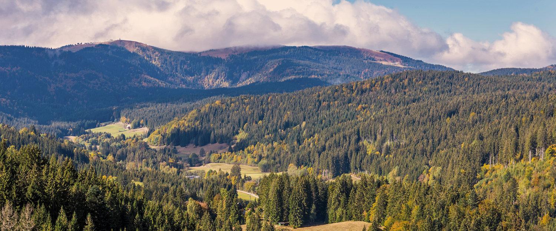 Natürliche Landschaft in Bad Bellingen