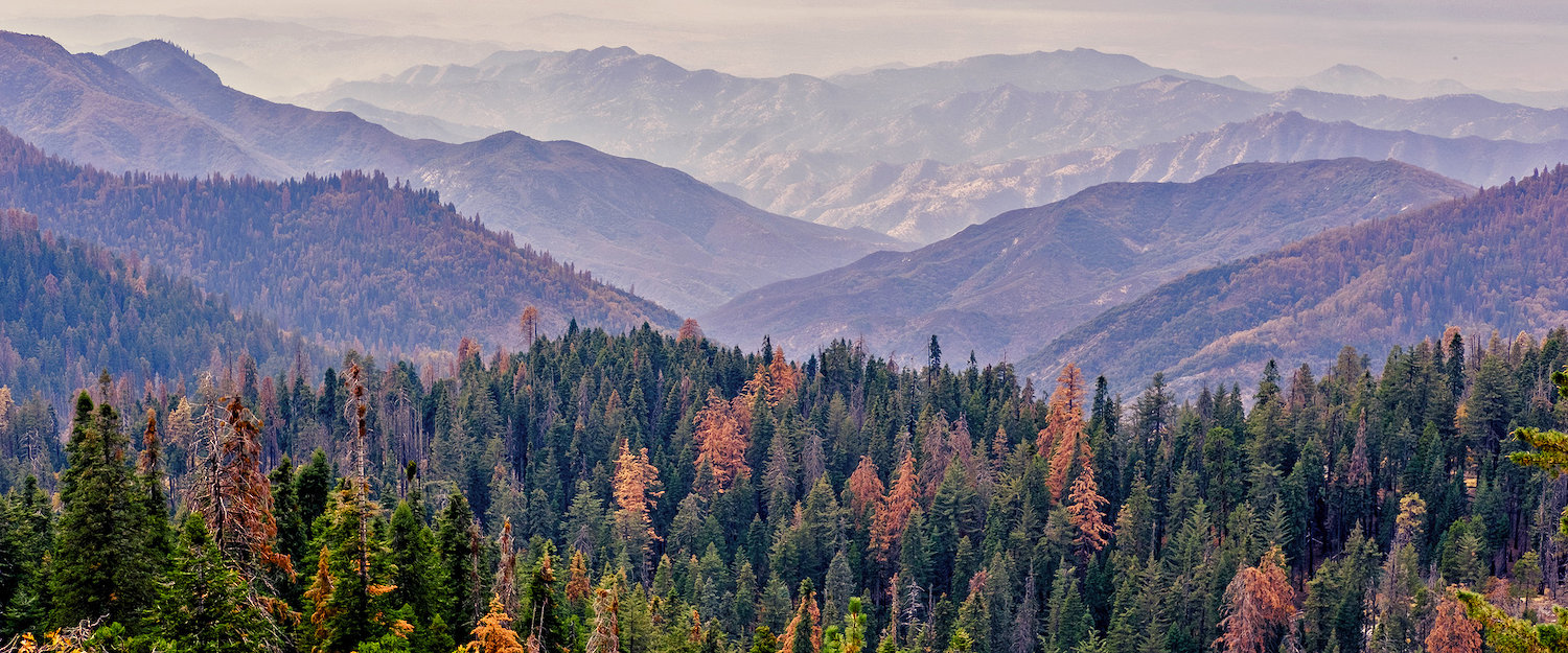Vacation Rentals in Sequoia National Park