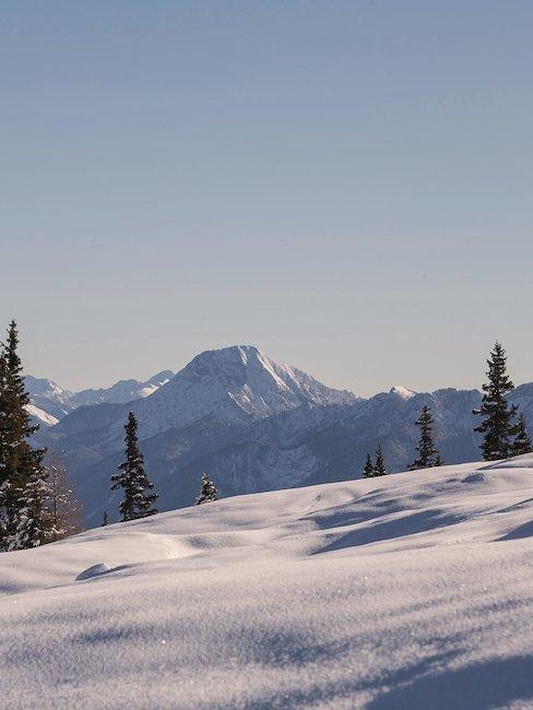 Auch im Winter ist Kärnten ein Highlight