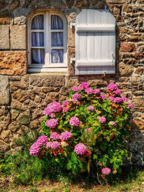 Vue sur maison à fleur