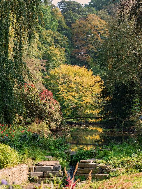 Landschaft in Ardennen