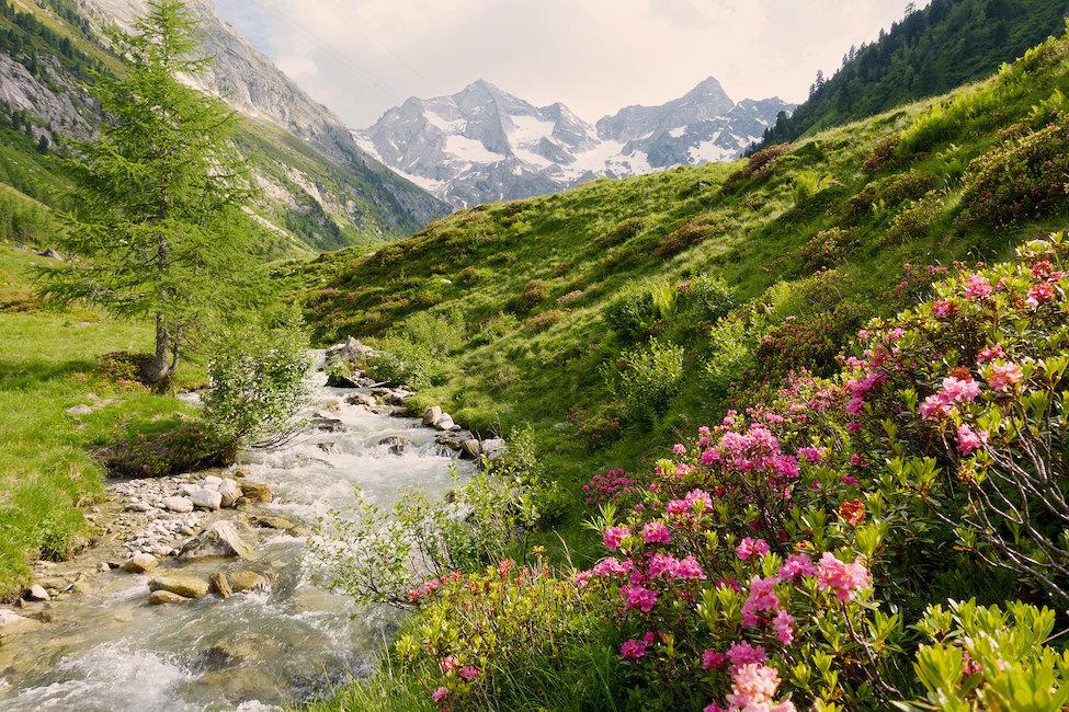 Hütten und Chalets in Osttirol