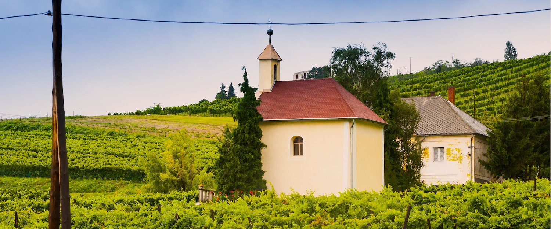 Kleine Kapelle inmitten eines Weinanbaugebietes beim Balaton