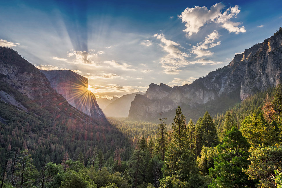 Cabins in Yosemite National Park
