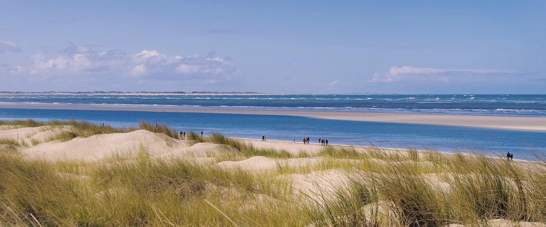 Strandhuisjes in Friesland