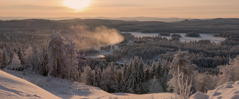 Semesterhus och lägenheter i Ludvika